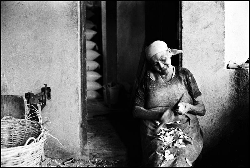 Flour production, Pernambuco, 2003.