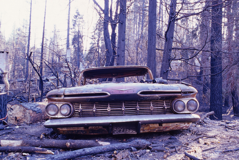 Grilled Chevvy : Someone's prized automobile