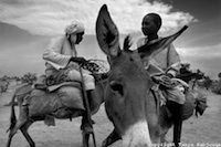 "From""Sanctuary: Portraits in the Sahel & Uganda"""