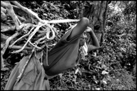 A woman carries firewood.
