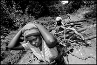 Women on their way home with the firewood they collected in the forest.