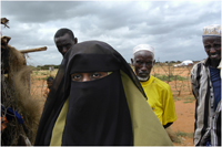 A woman and three men in IFO refugee camp.
